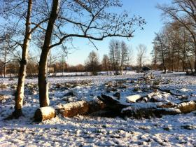 Winter in de Dommelbimd